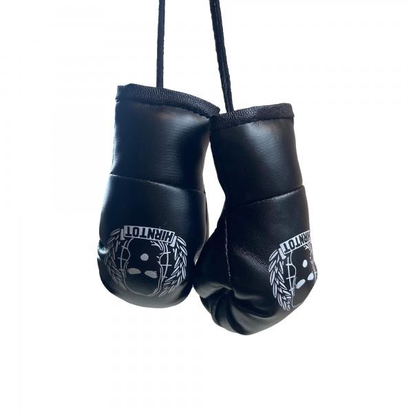 World Domination (Mini-Boxhandschuhe)